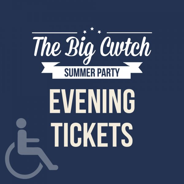 Disability Access Evening Ticket at The Big Cwtch